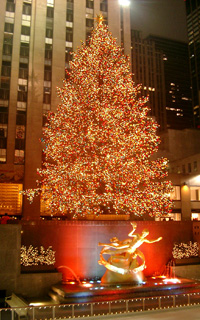 Рокфеллер-центр: рождественская ёлка